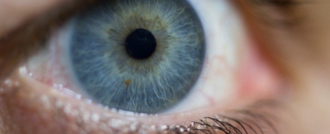 Motilité oculaire et Strabisme