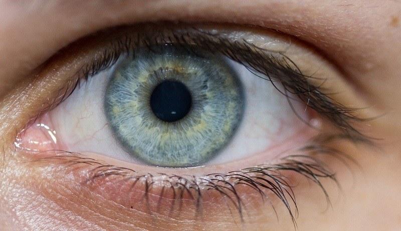 طول البصر