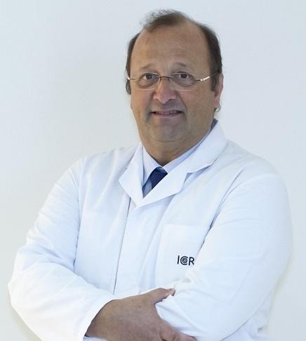 Dr. Lluís Bruix - ICR