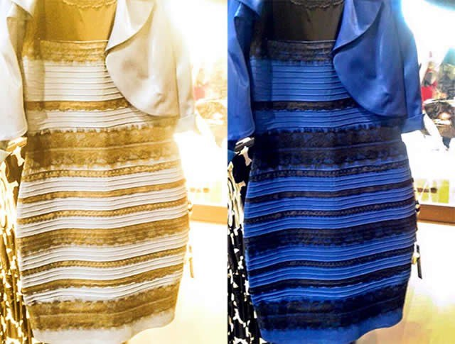 The response to the color of the dress is within our brain