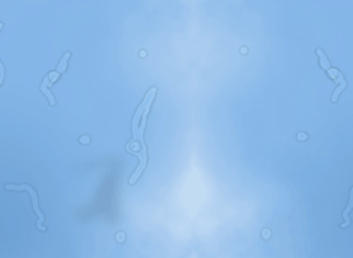 Myodésopsies ou corps flottants