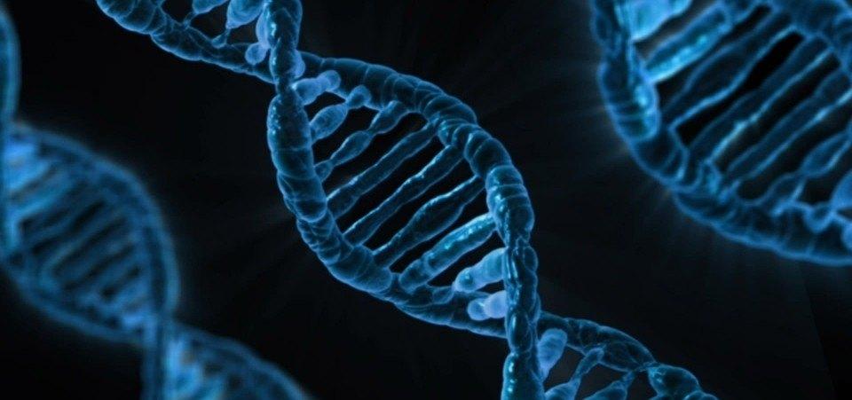 الخطورة الجينية