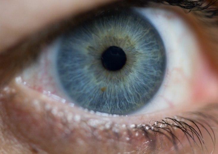 Глазная Моторика и Косоглазие