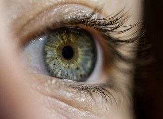 orbite et oculoplastie