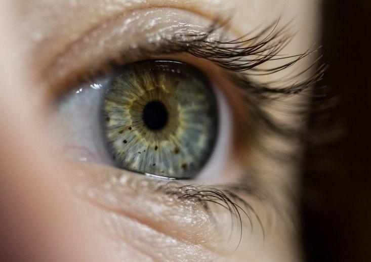 òrbita i oculoplàstia