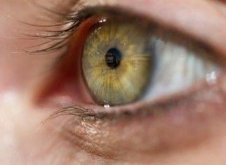 Роговица и передний отрезок глаза