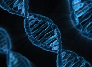 risc genètic