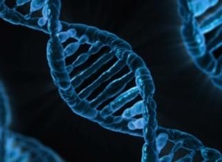 Генетические заболевания