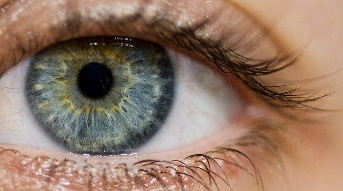 Allgemeine Augenheilkunde