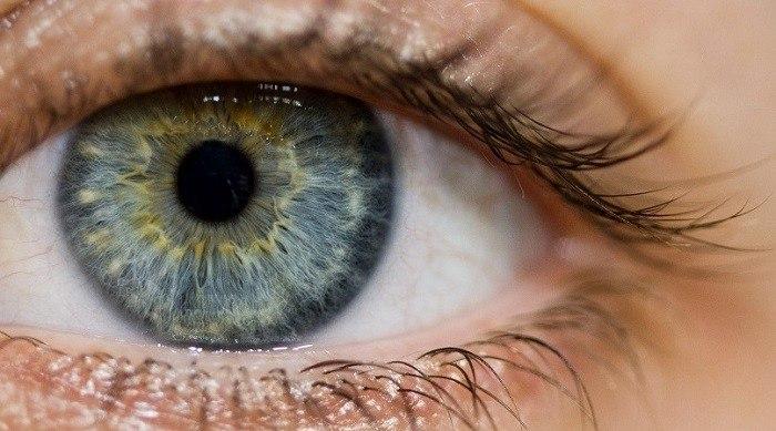 طب العيون العام