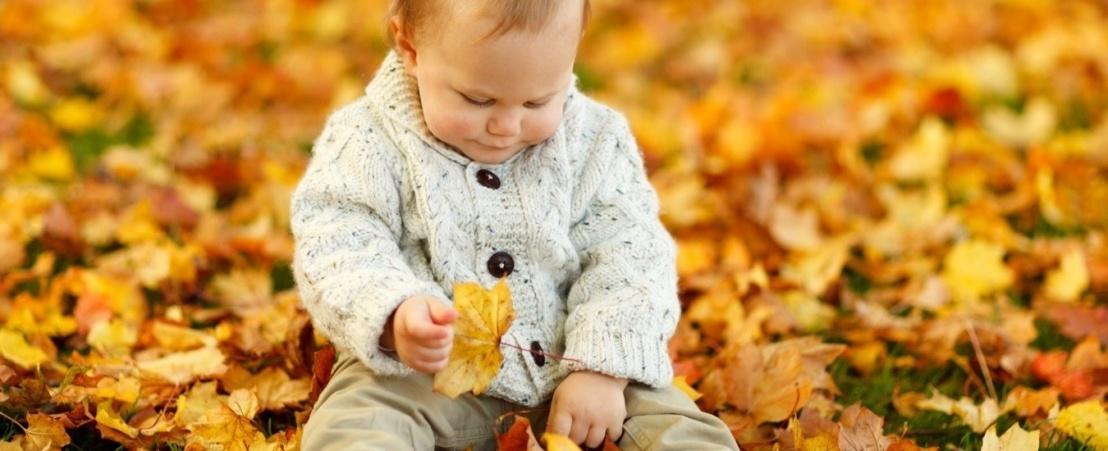 Conseils pour conserver nos yeux sains cet automne