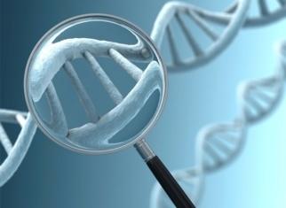 genética enfermedades visión