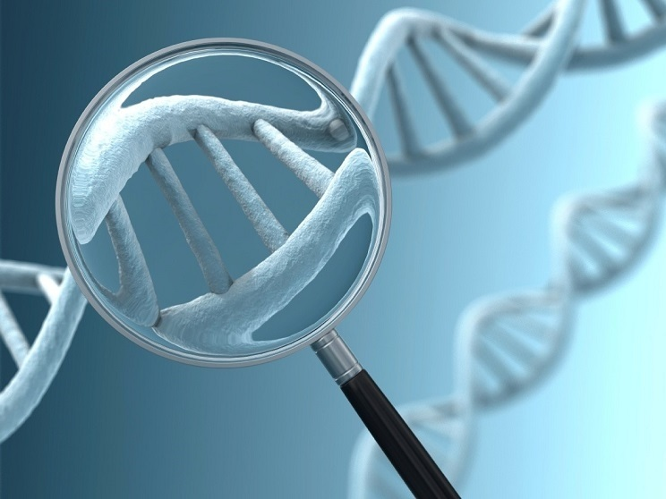genètica de les malalties de la vista
