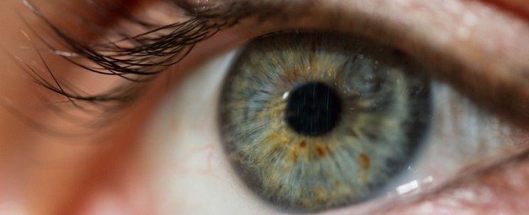 Das trockene Auge